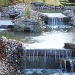 rupiks-11-trail-creek-nursery