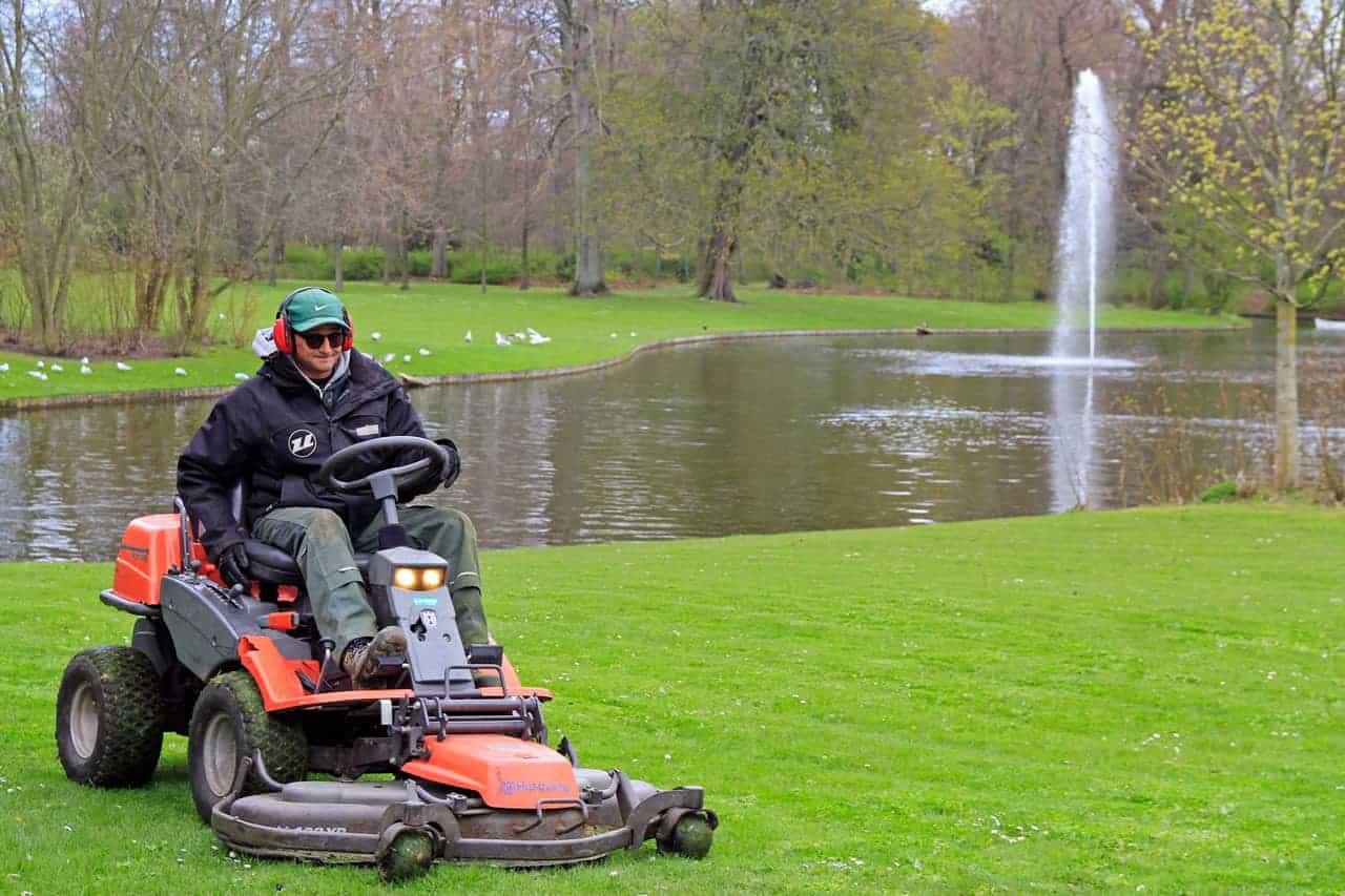 lawn maintenance mowing