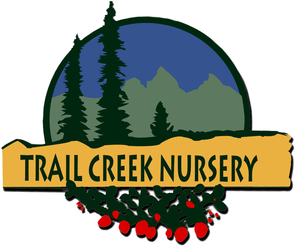 Trail Creek Nursrey Logo